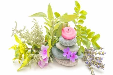 מדריך לשיפור פוריות באמצעות צמחי מרפא ורפואה סינית